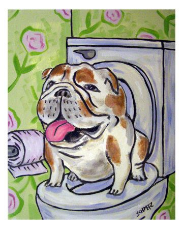 -jay-schmetz-bulldog-bathroom-jpg