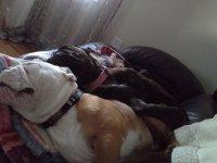 Synchronize sleepers.jpg