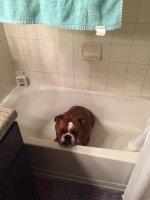 Bathtub Gabe.jpg