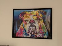 Dean Russo bulldog puzzle.jpg